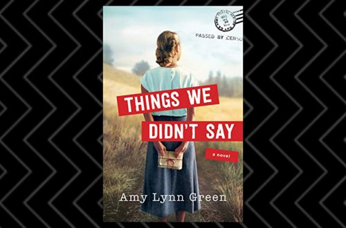 Book Review of Things We Didn't Say