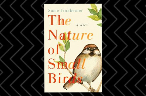 The Nature of Small Birds book review